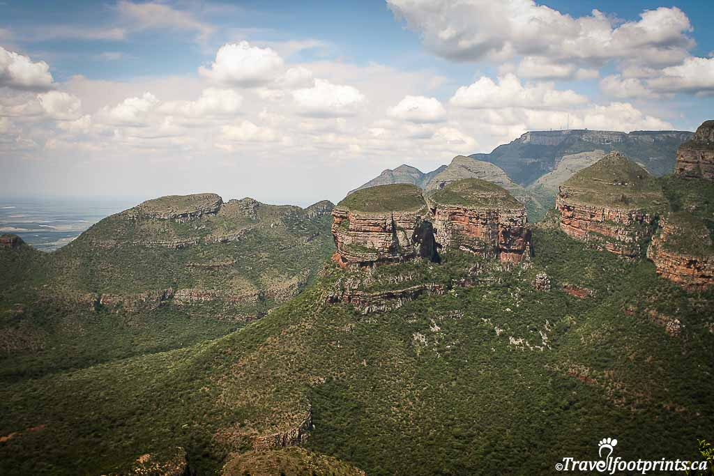 close up of three rondevals in blyde river canyon