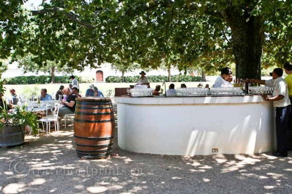 Franschhoek-Winery-Outdoor-Tasting-South-Africa-barrel-large-tree