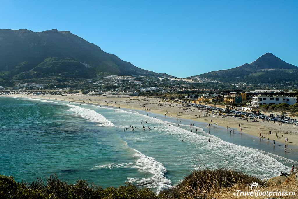 people swimming at camps bay beach near cape town
