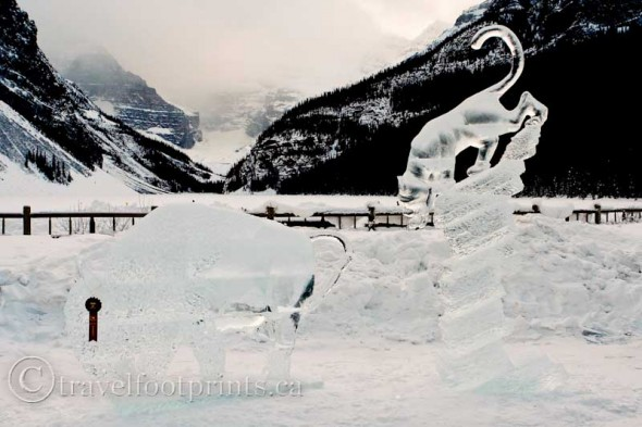 lake-louise-ice-magic-buffalo-cougar-sculpture