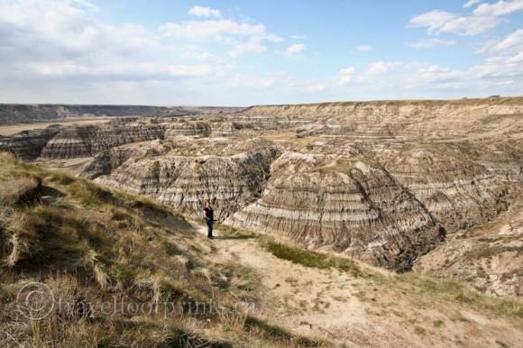 drumheller-alberta-badlands-canyon-view