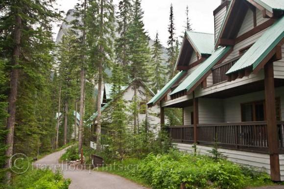 emerald-lake-lodge-accommodation-trail-forest-yoho-national-park