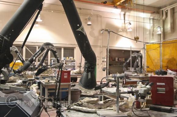 Royal-Tyrell-Dinsosaur-Museum-Paeleontologist-Equipment