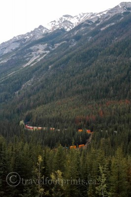 spiral-tunnels-train-curve-yoho-national-park