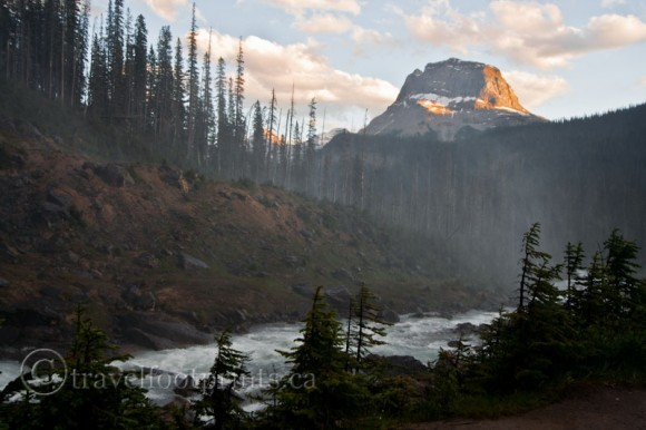 yoho-national-park-misty-river-view-mountain-trees