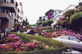 Lombard Street Sanfrancisco tourist attraction