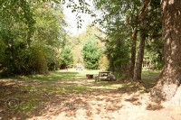 hornby-island-Tribune-bay-campground-picnic-table-trees