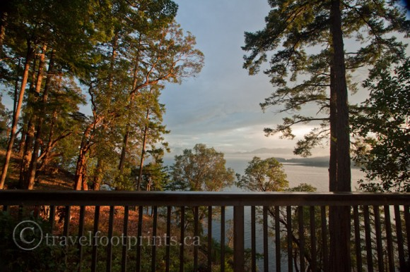 hornby-island-house-high-salal-balcony-arbuts-trees-beautiful-ocean-views