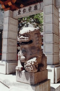 china-town-san-francisco-lion-statue-gate