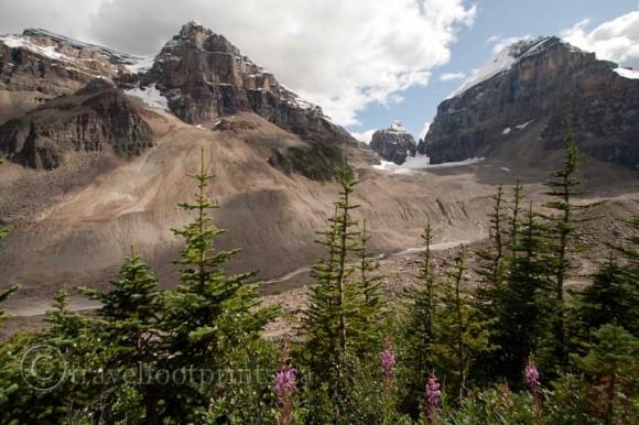 plain-six-glaciers-lake-louise-wild-flowers-mountains
