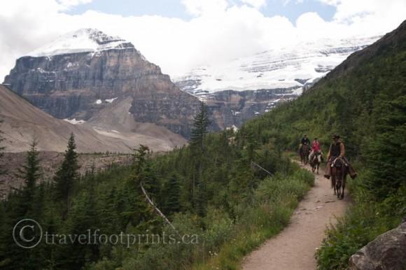 plain-six-glaicers-lake-louise-horses-trail