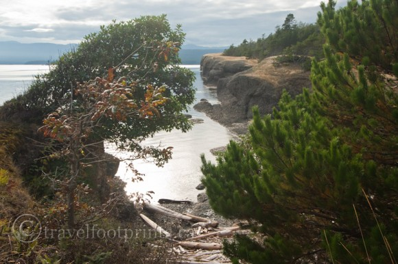 helliwell-park-ocean-shoreline-rugged-rocks-windswept-trees