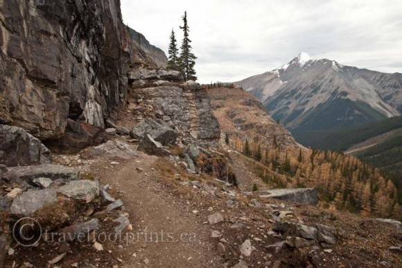 lake-ohara-steep-hiking-trail-lake-mcarthur