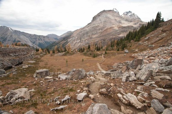 lake-ohara-hiking-trail-with-mountain-views