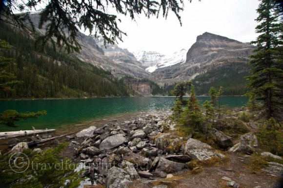 lake-ohara-view-green-water