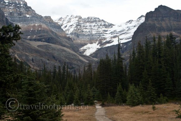 lake-ohara-hiking-trails-mountains-glaciers-trees-forest