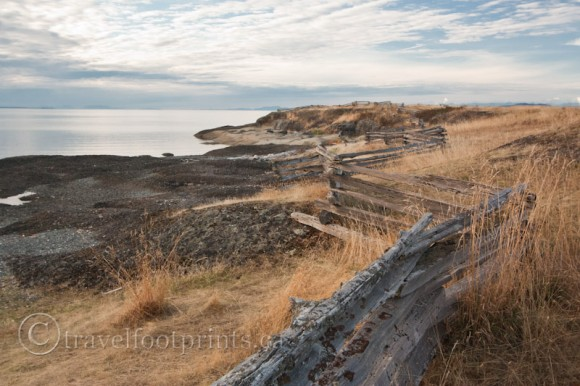 hornby-island-whaling-station-bay-wood-snake-fence-dry-grass-cloudy-sky