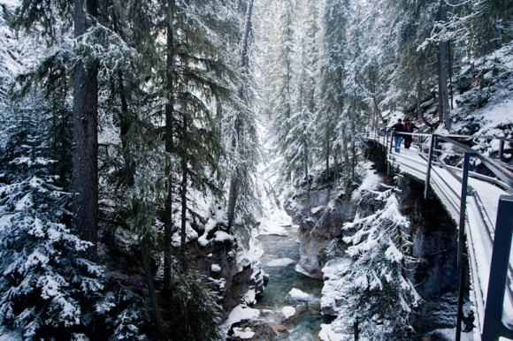 johnston-canyon-winter-hiking-forest-trail-catwalk