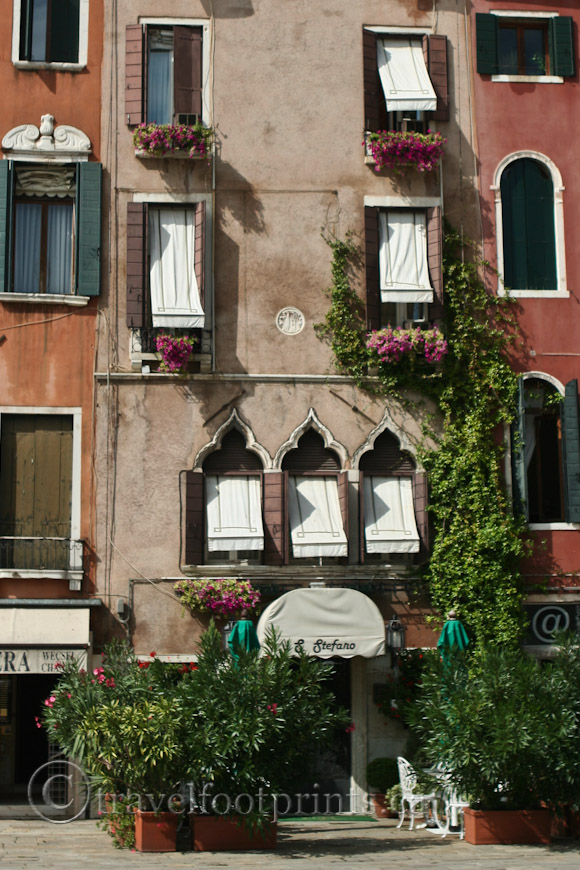 building-flower-window-boxes-venice-italy-plants-vines
