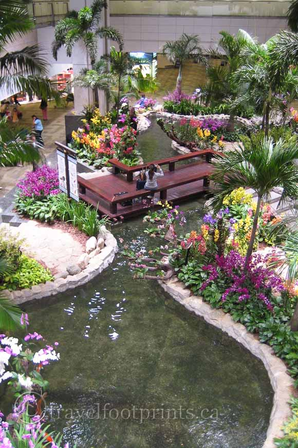 Singapore changi airport a destination in itself for Flower garden ponds