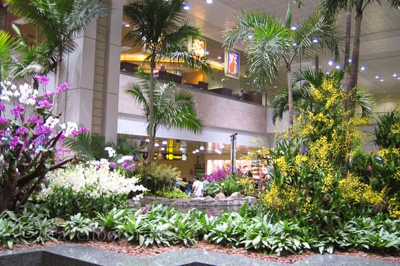 Singapore Changi Airport A Destination In Itself