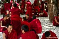 Sera Monastery Monk Debates