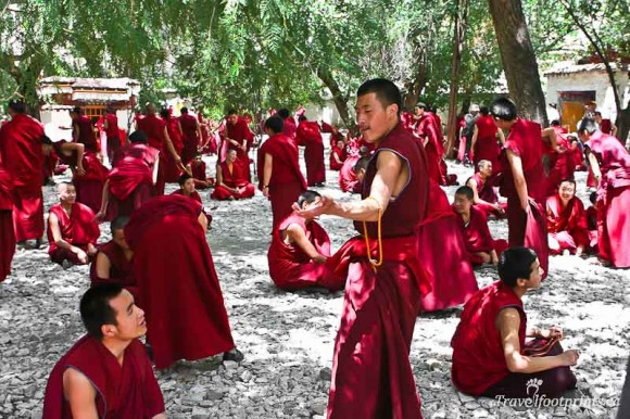 large-group-monks-sera-monstery-courtyard-lhasa-tibet-red-robes