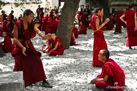 sera-monastery-monks-in-courtyard-red-robes-lhasa-tibet