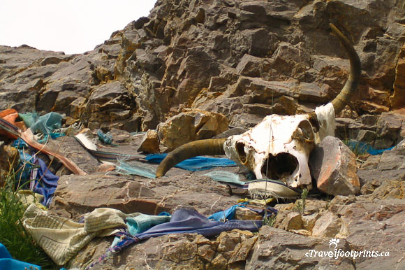 prayer-flags-yak-skull-rocks-tibet
