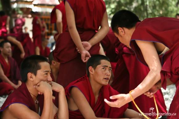 group-of-monks-sitting-sera-monastery-debates-lhasa-tibet
