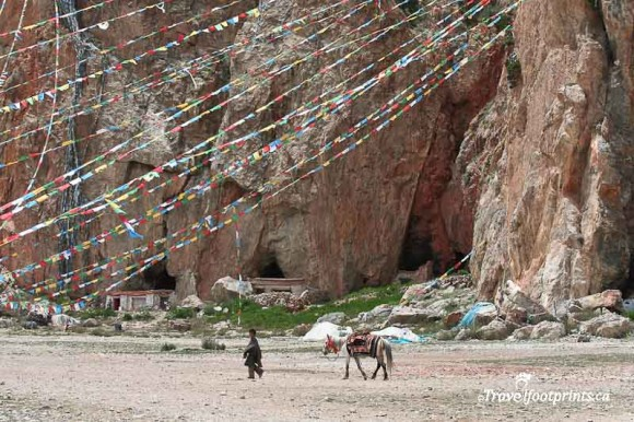 young-boy-walking-horse-prayer-flag-strings-nam-tso-lake-tibet