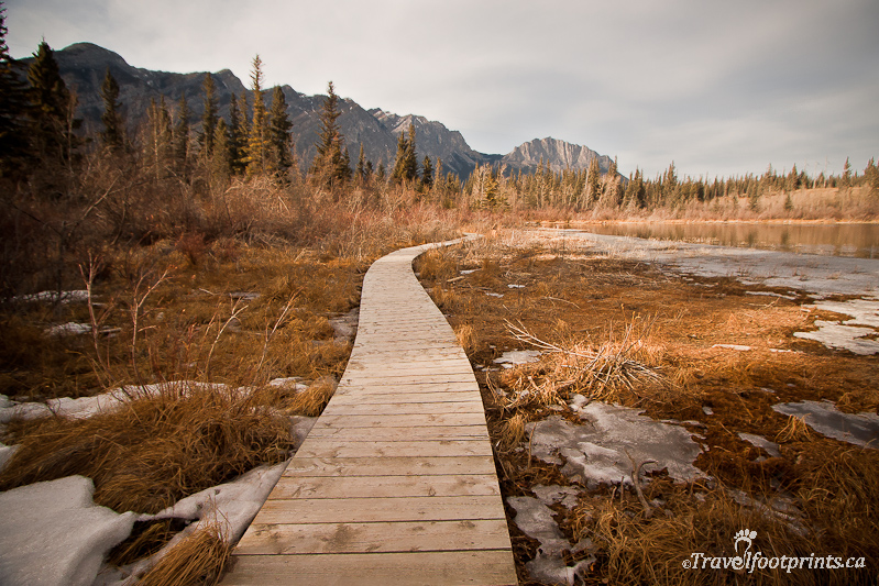 Mount Yamnuska And Bow Valley Provincial Park