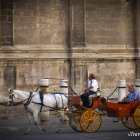 tourists riding in a horse carriage seville spain