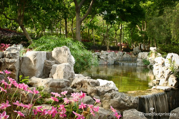 beautiful-kowloon-walled-city-park-rocks-waterfall-pink-flowers-trees-lush-shrubs-hong-kong-china