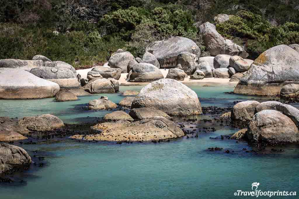 turquoise water and huge rocks at boulders beach