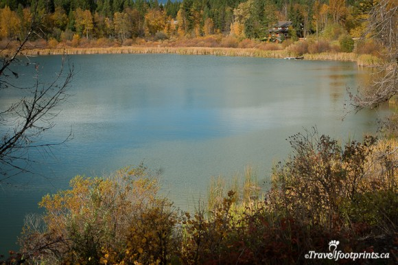 blue-water-heffley-lake-fall-colours-trees-british-columbia-autumn-fishing-outdoor-recreation-boating