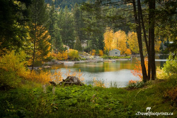 cabin-heffley-lake-boat-launch-fall-tree-colours-autumn-pretty-scenery-thompson-nicola-valley-kamloops-british-columbia