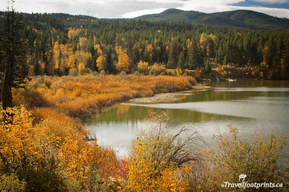 heffley-lake-fall-foilage-autumn-colours-outdoor-activities-boating-fishing-thompson-nicola-valley-kamloops