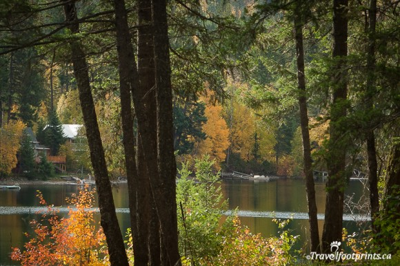 heffley-lake-trees-fishing-british-columbia-water-recreation-fishing-trout