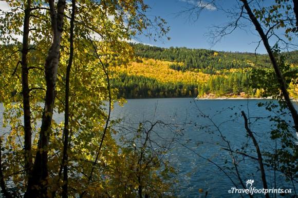 blue-water-heffley-lake-trees-fishing-boating-outdoor-recreation-kamloops-british-columbia-yellowhead-highway