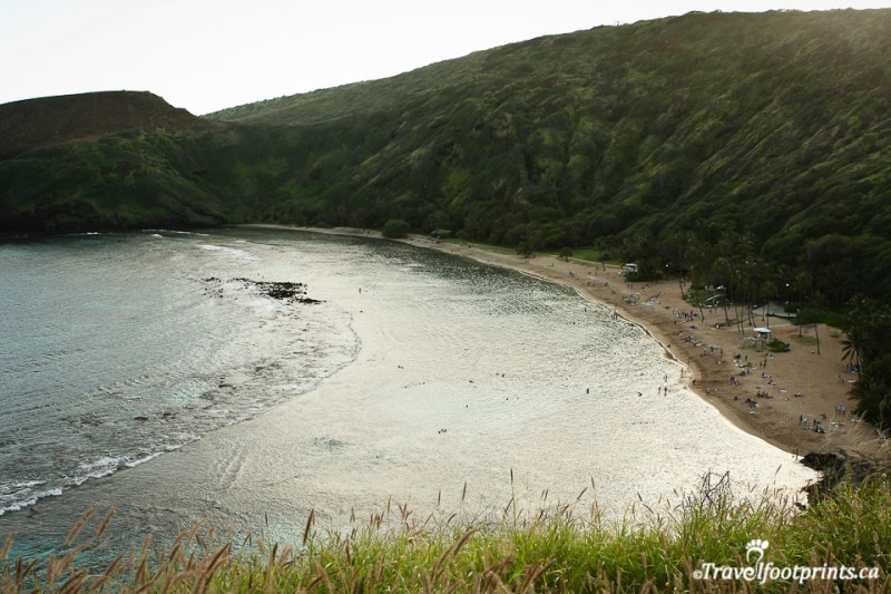 Hanauma-bay-snorkeling-tropical-fish-oahu-hawaii-tourist-attraction-island-sand-ocean