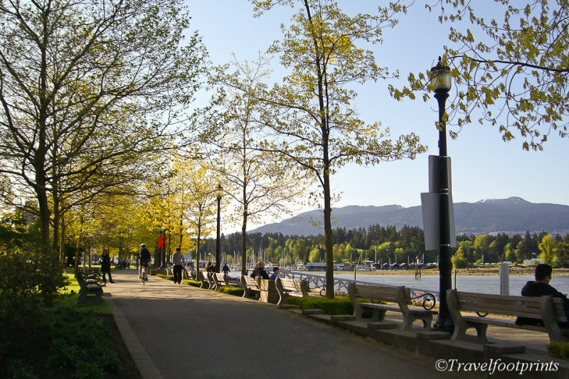 concrete-walkway-coal-harbour-downtown-vancouver-sunny-day-benches-ocean-trees