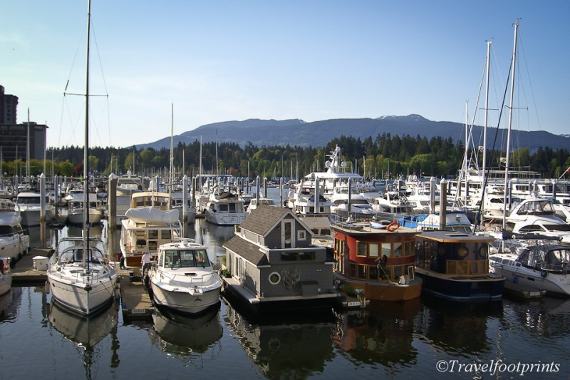 yachts-marina-coal-harbour-vancouver-water-ocean-house-boat-sunny