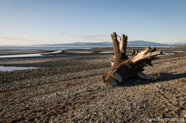 A Little Beach Time In Parksville B.C.