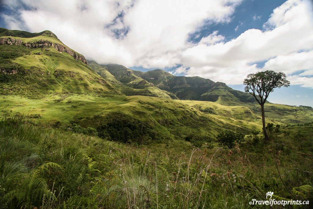 hiking-trail-monks-cowl-rolling-green-mountains-drakensberg-scenery