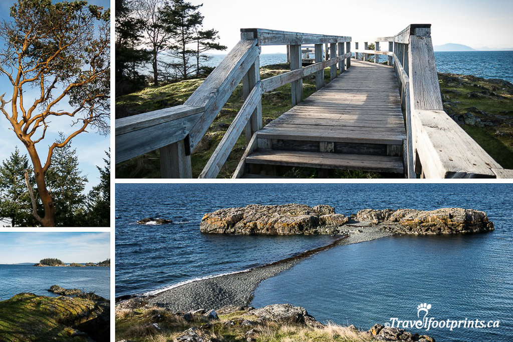 neck-point-park-nanaimo-ocean- boardwalk-leisure-walk